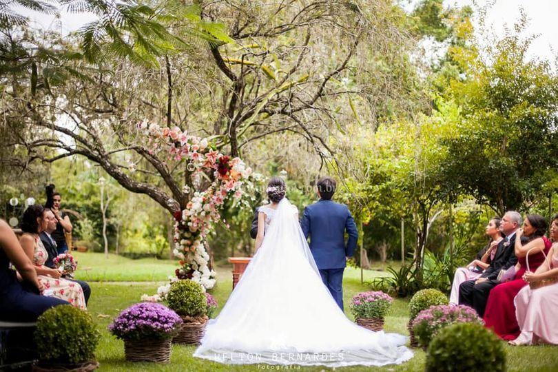 Cerimônia sob a árvore