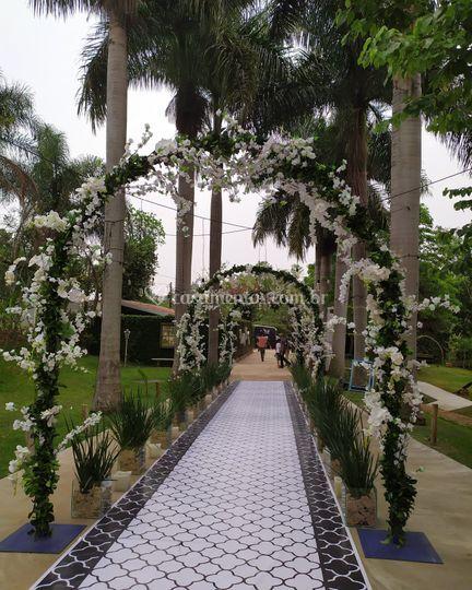 Cerimonia sob palmeiras