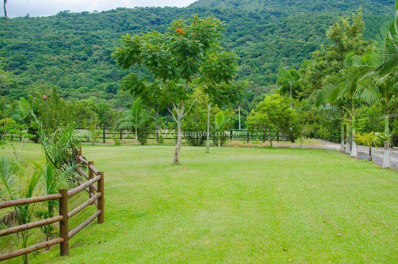 Área gramada ampla