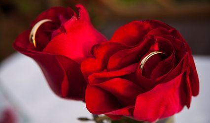 Regiane Moraes Weddings 1