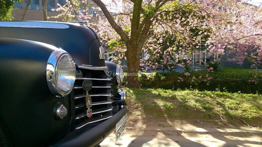 Vauxhall 1949 de perfil