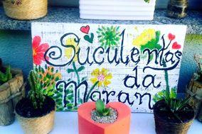 Cactos e Suculentas da Maran