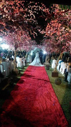 Casamento Anderson & Aline