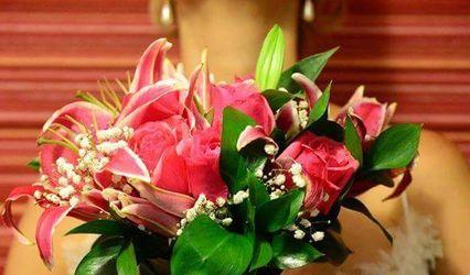 Acácia Flores Floricultura 1