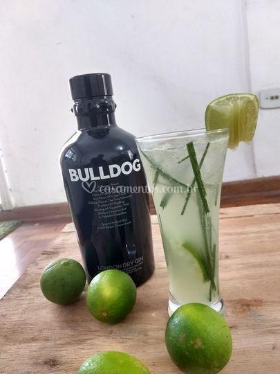 Gin, limão e cidreira
