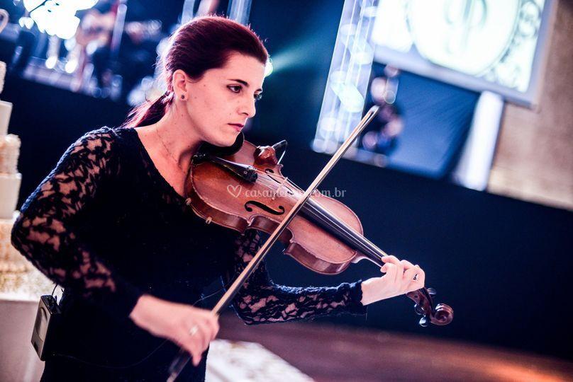 Violino lounge