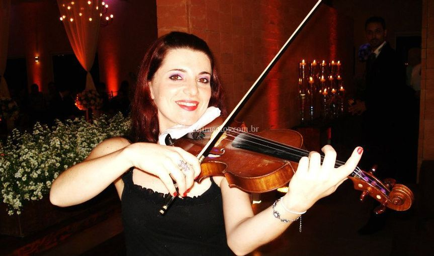 House orquestra - violino