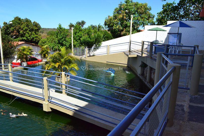 Lago artificial para peixes