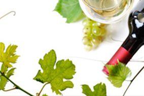 Bacco`s Vinhos e Accesorios