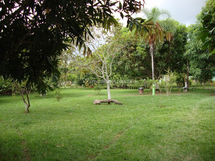 Espaço gramado