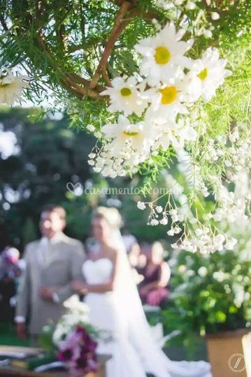 Casamento Amanda e Plauto