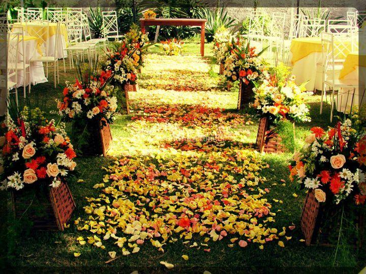 Casamento Diurno