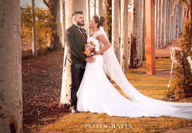 Casamento VI