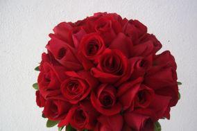 Floricultura Damata's