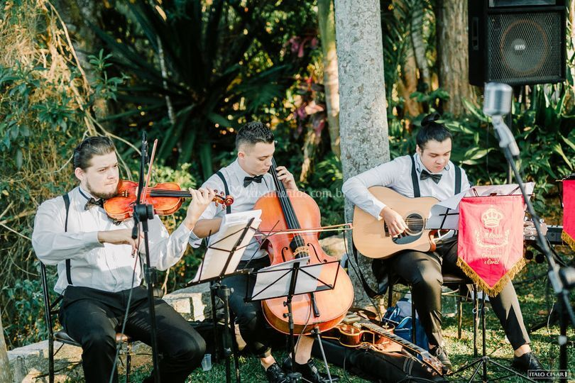 Violão, violino, cello e voz