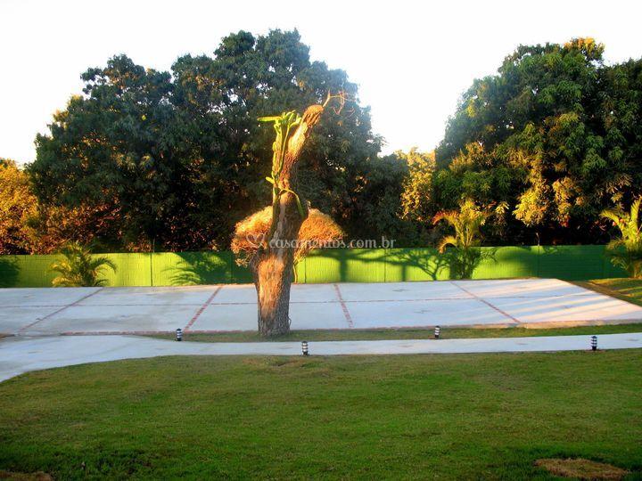 Área para cerimonia