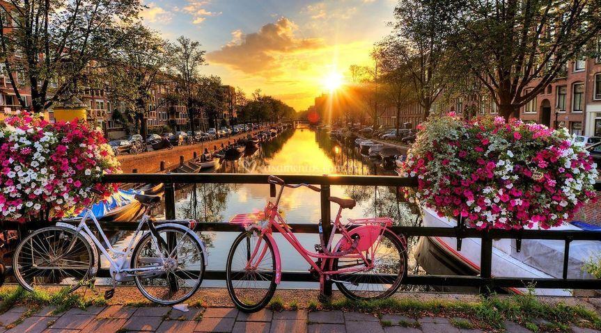 Amsterdam - NL