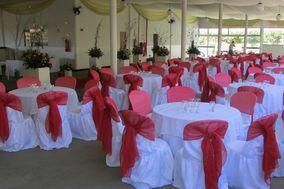 Moc Festa Salão