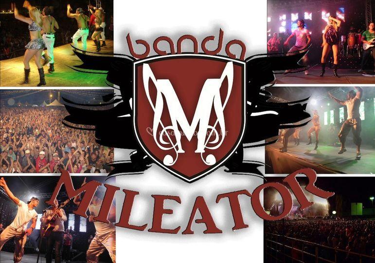 Banda Mileator