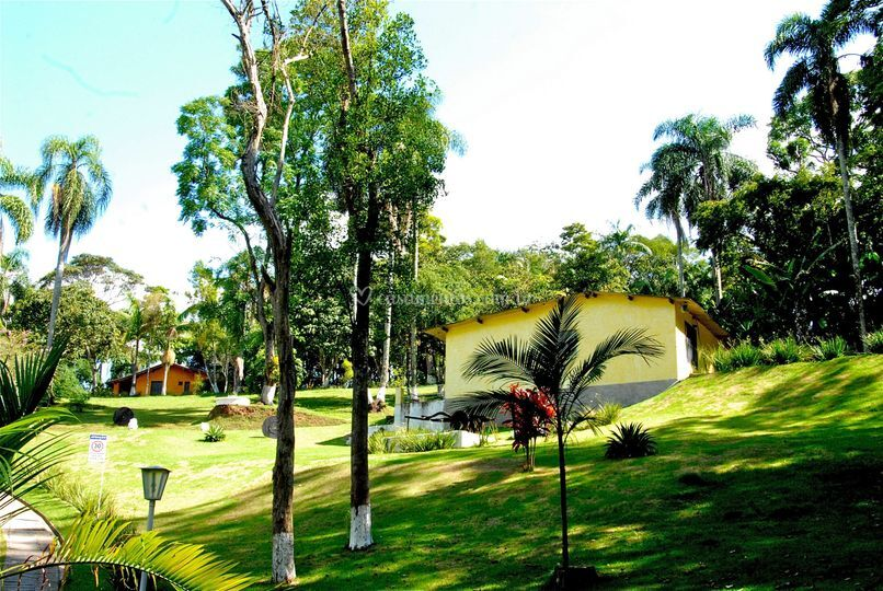 Jardim plantas ornamentais