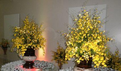 Toque Mágico Flores e Decorações