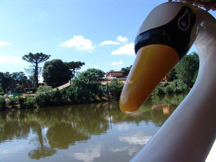 Lago com pedalinho