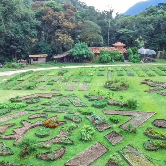 Horta biodiversa