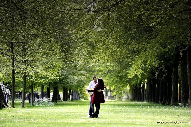 Ensaio pre casamento holanda