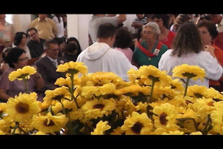 Imagem Cine Vídeo