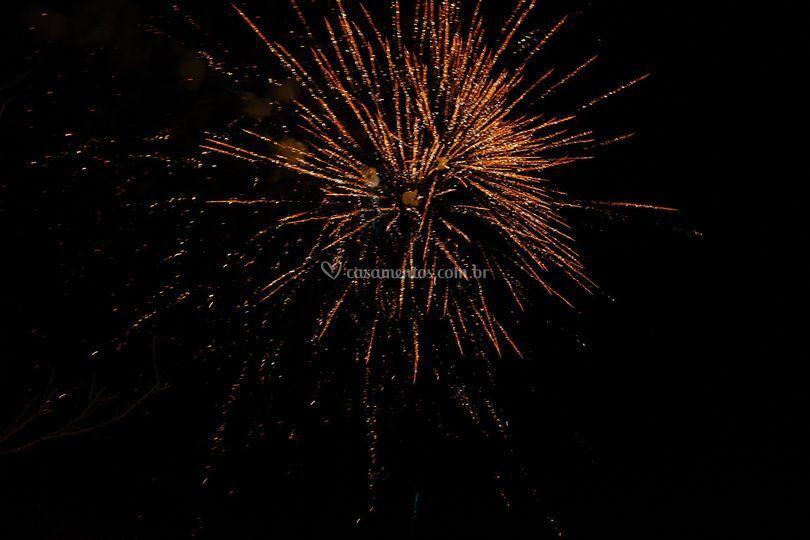 Fogos de Artifício no Jardim