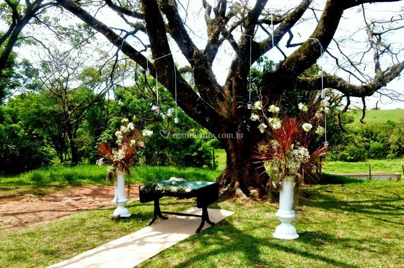 Cerimônia no gramado 1