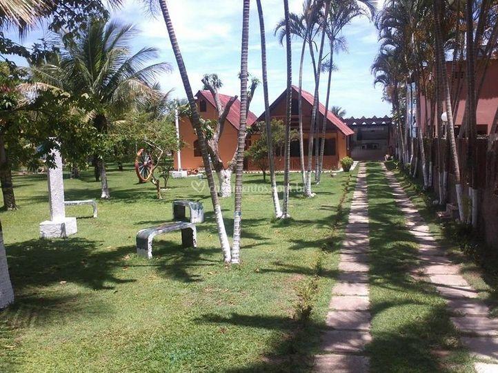 Caminho das palmeiras