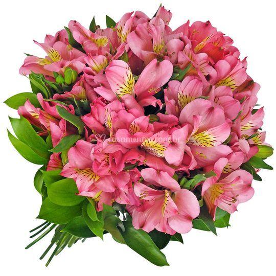 Bouquet Astro Rosa