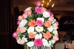 Rosa cor rosa e branca