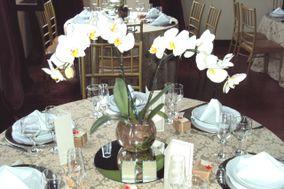 Orquídea em vazo