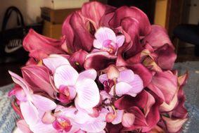Callas pink e orquideas