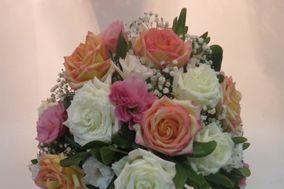 Mix de rosas