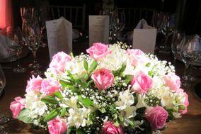 Cor de rosa e branco