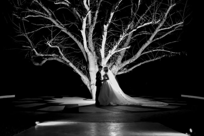 Casamento Sitio HIS Eventos