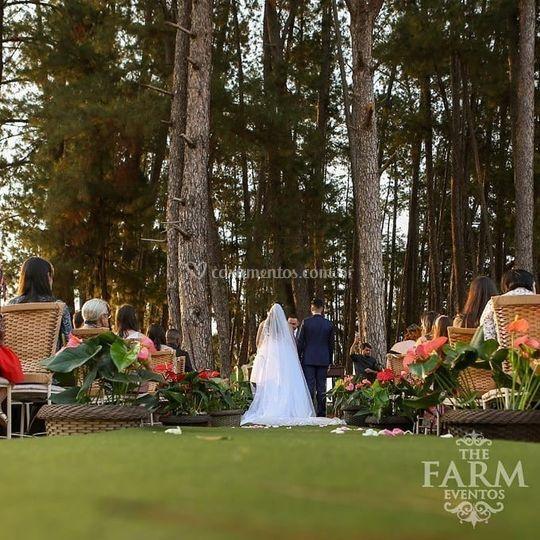 Casamentos ao ar livre The Far