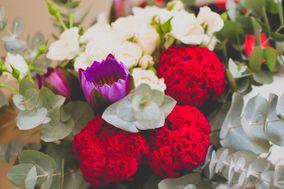 Candy Flores e Festas
