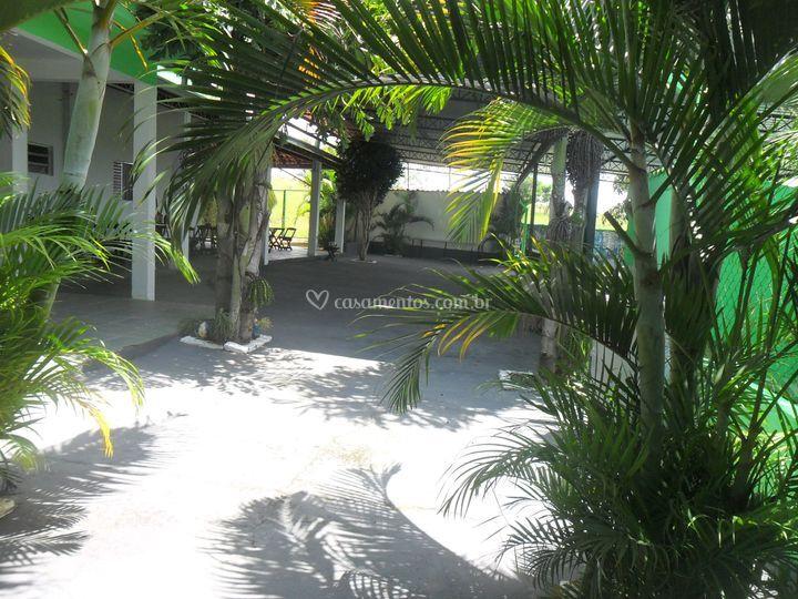Ambiente decorado de palmeiras