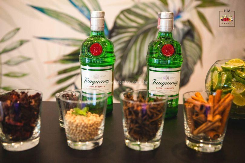 HM Drinks - Gin Tônica