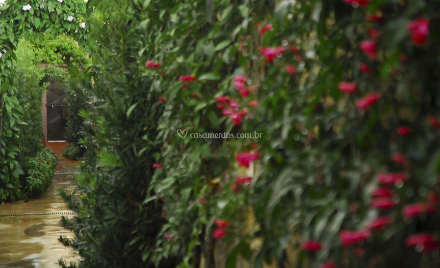 Corredor em flores