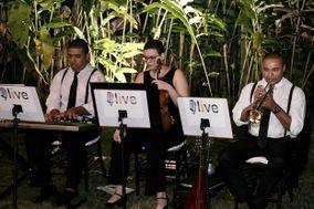 Live Música e Arte