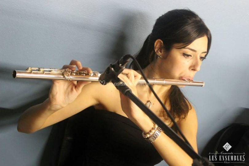 Músico internacional