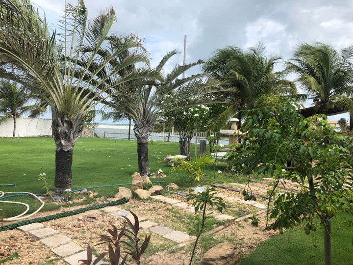 Caminho de acesso deck e jardi