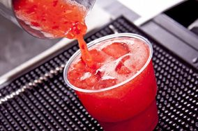 Drink Bartenders