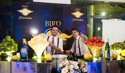 Bird Drinks 1