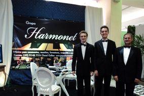 Grupo Harmonet